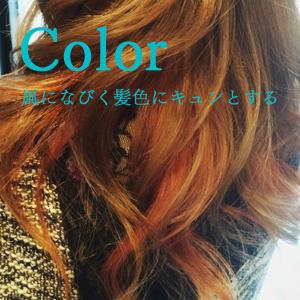 ヘアカラー/熊本市中央区下通‐マチナカのヘアカラーevolutionでは風になびく髪色でキュンとさせたいと願っています。